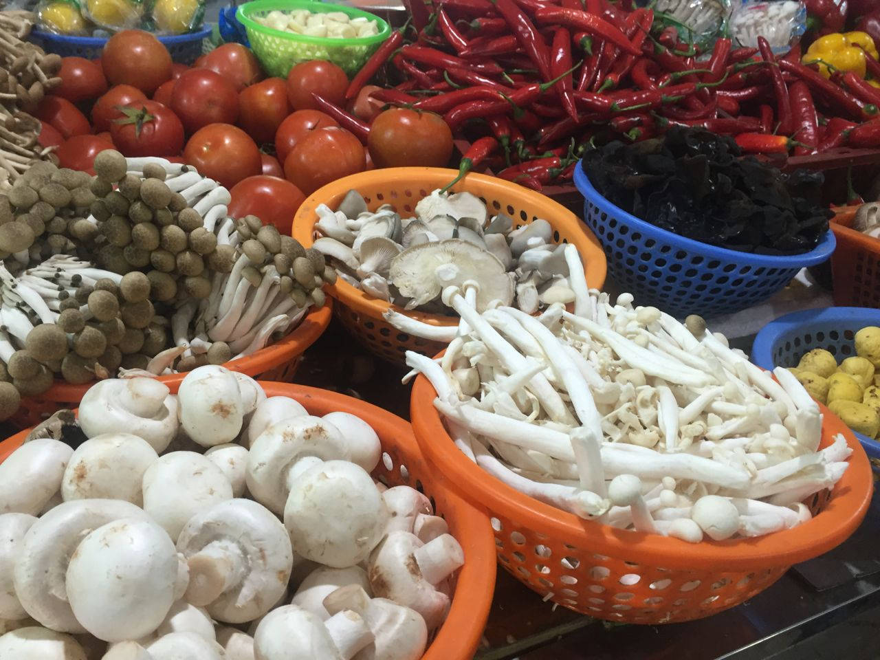 china wet market mushrooms